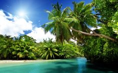 тропический остров: 21 тыс изображений найдено в Яндекс.Картинках