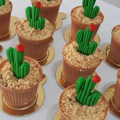 A imagem pode conter: comida Best Picture For Brawl Stars. Informations About A imagem pode conter: comida Best Picture For Brawl Stars Birthday Party id Cactus Cupcakes, Succulent Cupcakes, Cactus Cake, Homemade Business, Fiesta Party Decorations, Watermelon Cake, Toy Story Party, Mexican Party, Graduation Party Decor