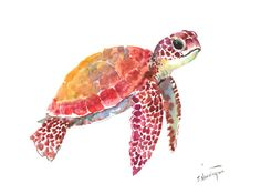 Sea Turtle, One of a kind original watercolor painting 12 X 9 baby sea turtle sea turtle art, children wall design illustration Watercolor Animals, Watercolor Paintings, Sea Turtle Art, Sea Turtles, Sea Turtle Drawings, Turtle Baby, Art Sketches, Art Drawings, Turtle Painting