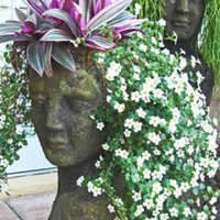 The Empty Nester: A Journey: Making My Own Head Planters With Hypertufa