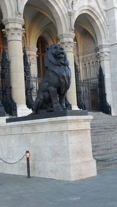 See 5193 photos and 322 tips from 30809 visitors to Parlament. Amazing Buildings, Four Square, Lion Sculpture, Statue, Art, Art Background, Kunst, Gcse Art, Sculpture