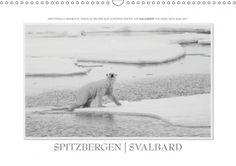 Spitzbergen in black & white. Wie ist Eure Meinung?  Spitzbergen  Svalbard