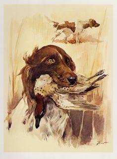 Kleiner MUNSTERLANDER Dog Print Vintage by plaindealing on Etsy