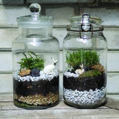 diy realiser terrarium
