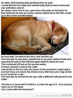I doubt this is real but it's a funny story and a cute picture of a sweetie pie sleeping!