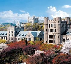 Programs > Office of Study Abroad Programs Education Agent, Korea University, Education Architecture, Student Life, Study Abroad, South Korea, My Dream, Seoul, Cathedral