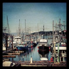 Nanaimo Harbour Vancouver Island, New York Skyline, Travel Destinations, Things To Do, Places, Instagram, Things To Make, Places To Travel, Destinations