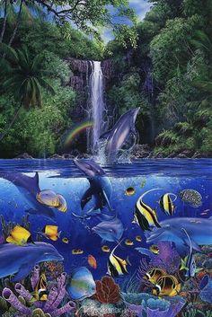 Dolphin Aqua Life Wallpaper Software - Free Download ...