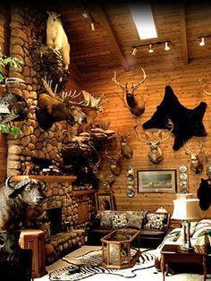 Sweet trophy room.