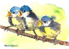 ACEO Limited Edition 1 out of 25- Blue tit chicks, in watercolor.