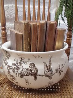 books in a chamber pot:)