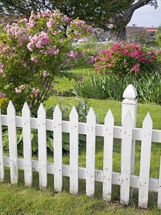 White Picket Fence / 454