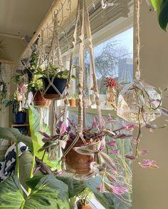 Room With Plants, House Plants Decor, Plant Decor, Plant Rooms, Room Design Bedroom, Room Ideas Bedroom, Diy Bedroom Decor, Deco Studio, Indie Room