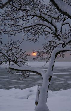 Winter Sunset, Lauttasaari, Finland photo via sheila. I really want to go to a winter wonderland Winter Szenen, Winter Sunset, Winter Love, Winter Magic, Winter Night, Winter White, Deep Winter, Cold Night, Winter Holiday
