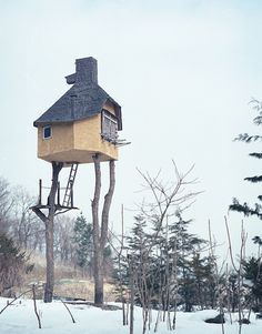 why bother with a treehouse that has branches above that could crash on your roof, and that continues to grow (which loosens your joints) when you can find a few dead tree trunks (still anchored by roots to the ground) to use as foundations for a strong and safe house?  terunobu fujimori