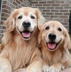 Those smiles!