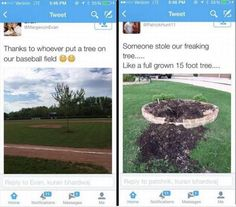 Someone Stole Our Tree funny iphone funny quote funny quotes funny sayings humor funny pictures funny images pranks
