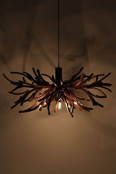 Ramus Chandelier - Anthropologie.com. I love this! But the price? 3,498.00 on sale for 1,699.95?! Crazy town... I think I could get a similar look with some sticks and some dark stain......