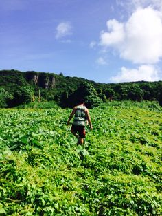 Adventure in the Greens, Marpi, Saipan