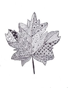 fall leaf zentangle