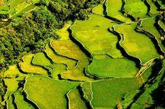 Infuago, Filiphines