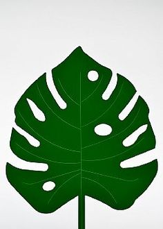 Feeling Tropical - Φύλλο Μονστέρα PVC Πράσινο σκούρο 55x42cm Plant Leaves, Plants, Plant, Planets