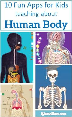10 apps for kids to learn about human body -- apps are perfect learning tools to learn human anatomy and functions. With interactive multi-media features it is fun to see the inside of your body and play with the interactive visuals and videos. Kids w Kid Science, Teaching Science, Science Activities, Science Projects, Teaching Kids, Science Lessons, Educational Activities, Learning Apps, Learning Tools
