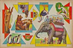 Vintage Zoo, Paper Toy by shelece, via Flickr