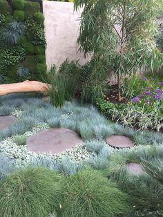 textured garden - Garden Care, Garden Design and Gardening Supplies Dry Garden, Garden Shrubs, Garden Paths, Gravel Garden, Winter Garden, Shade Garden, Australian Garden Design, Australian Native Garden, House Landscape