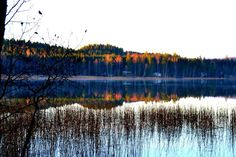 Autumn at the lake Alasjärvi 09/15