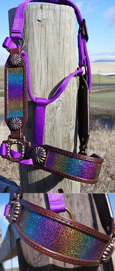 Stunning western halter! Rainbow string ray and beautiful conchos. This is amazing tack! #ad