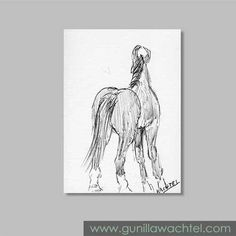 Mini Treasures 38 - ACEO Marwari Horse