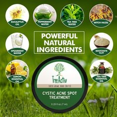treeactiv cystic acne area treatment where to invest in Acne Treatment At Home, Cystic Acne Treatment, Natural Acne Treatment, Acne Treatments, Witch Hazel Oil, Tea Tree And Witch Hazel, Bad Acne, Acne Scar Removal, Acne Spots