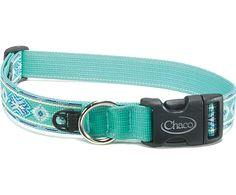 Chaco  Dog Collars  Dog Collars