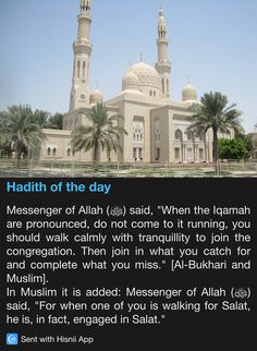 Hadith of the day walking with tranquility to iqamah                                                                                                                                                                                 More