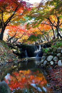 [Colores del otoño ~ Cascada, Nara, Japón] » Autumn Colors ~ waterfall, Japan