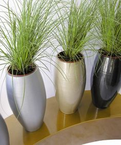 Eclipse vases in assorted colours, planted with grasses