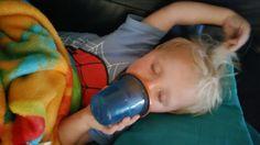 Samson drinking juice 8/15