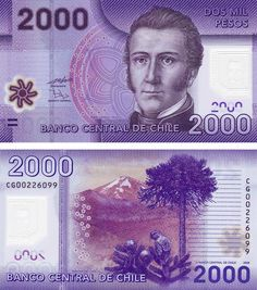 2000 pesos Chile 2010 Obverse effigy by Manuel Rodriguez Reverso National Reserve Nalcas and a choroy parrot - My CMS