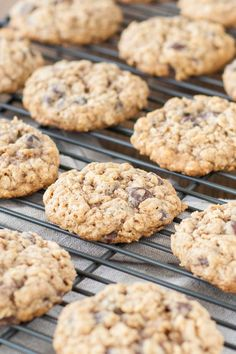 Close up of chewy oatmeal chocolate chip cookies.
