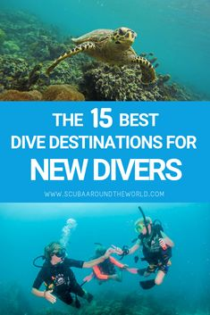 You just did your PADI Open Water course and want to try out your new dive skills. Check out these 15 awesome destinations! Best Snorkeling, Best Scuba Diving, Scuba Diving Gear, Cave Diving, Scuba Destinations, Diving Thailand, Scuba Travel, Scuba Diving Certification, Railay Beach