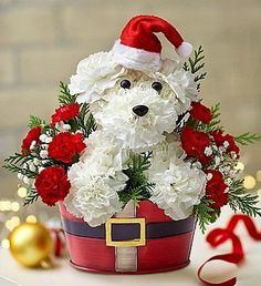 Santa Paws™ flower arrangement. Too cute!