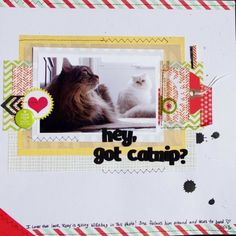 Got+Catnip?+by+bronte10+@2peasinabucket