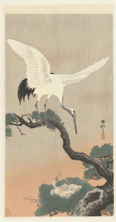 Japanse kraanvogel op tak van pijnboom, Ohara Koson, 1900 - 1930