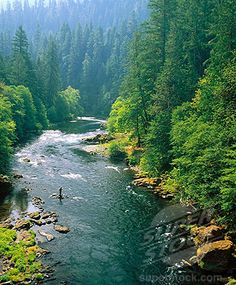 one of my favorite places- North Umpqua River
