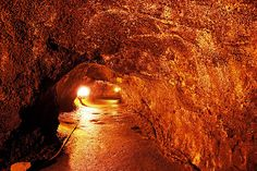Explore # 419  The Thurston lava tubes in Hawaii Volcanoes National Park. Lava tubes are natural conduits through which lava travels beneath the surface of a lava flow, expelled by a volcano during an eruption. And when the rock has cools, it leaves  Some folks say God is dead - http://www.sashaslavic.com/