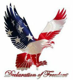 Meet your Posher, Kunle American Flag Eagle, American Pride, I Love America, God Bless America, Pictures Images, Cool Pictures, Patriotic Pictures, Patriotic Quotes, Flying Flag