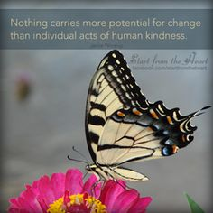 individual acts of human kindness / shared via fb #wordsofwisdom