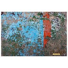 Grunge Textures - Peeling Paint ❤ liked on Polyvore featuring textures, backgrounds and grunge