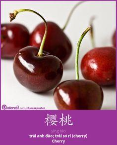 樱桃 - yīng táo - trái anh đào - cherry